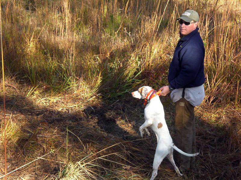 Cam Lenier Jr and the dog ready to find some quail