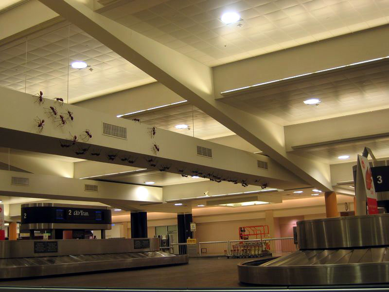 Atlanta airports, 3am