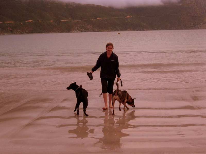 Lindsey tries the water with the dogs
