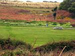 Bryher's golf course
