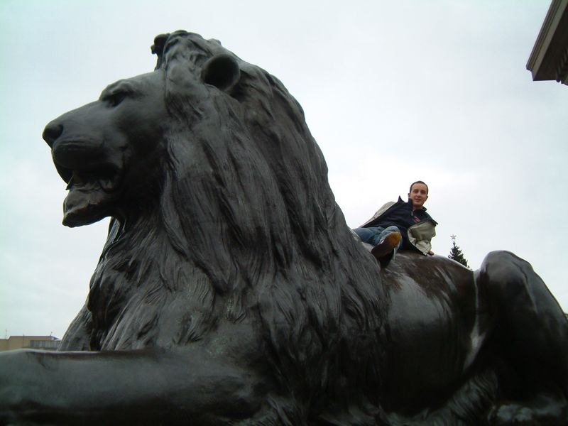 Riding the Lion